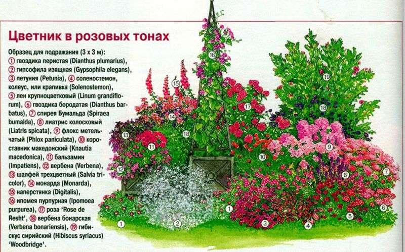 Квітники на дачі своїми руками